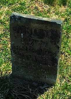 LEWIS, ABIGAIL - Highland County, Ohio | ABIGAIL LEWIS - Ohio Gravestone Photos