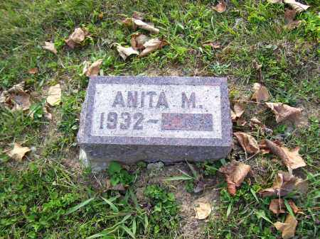 NYE, ANITA M. - Highland County, Ohio | ANITA M. NYE - Ohio Gravestone Photos