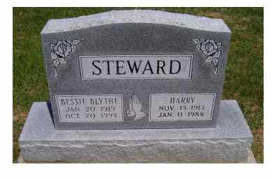 STEWARD, HARRY - Highland County, Ohio | HARRY STEWARD - Ohio Gravestone Photos