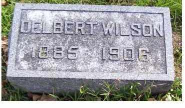 WILSON, DELBERT - Highland County, Ohio | DELBERT WILSON - Ohio Gravestone Photos