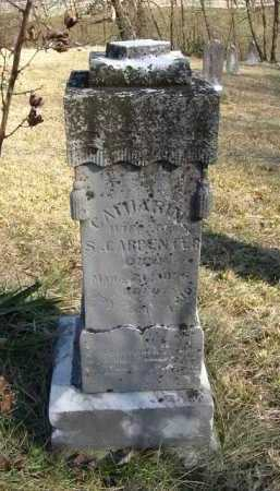 CARPENTER, CATHARINE - Hocking County, Ohio | CATHARINE CARPENTER - Ohio Gravestone Photos