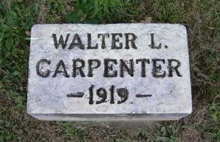 CARPENTER, WALTER L. - Hocking County, Ohio | WALTER L. CARPENTER - Ohio Gravestone Photos