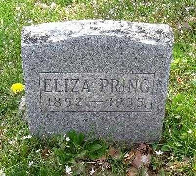 PRING, ELIZA - Hocking County, Ohio | ELIZA PRING - Ohio Gravestone Photos