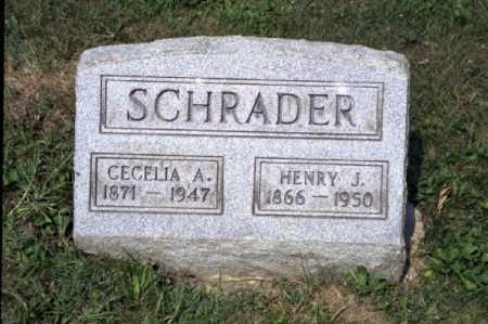 MILLER SCHRADER, CECELIA ANN - Hocking County, Ohio | CECELIA ANN MILLER SCHRADER - Ohio Gravestone Photos