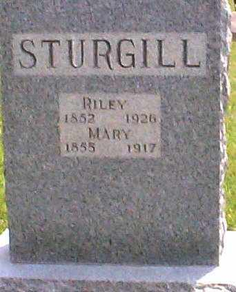 HEINE/HINEY STURGILL, MARY - Hocking County, Ohio | MARY HEINE/HINEY STURGILL - Ohio Gravestone Photos