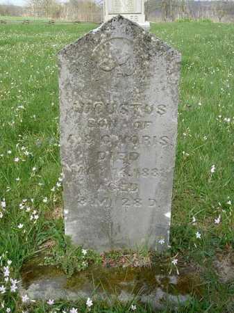 VORIS, AUGUSTUS - Hocking County, Ohio | AUGUSTUS VORIS - Ohio Gravestone Photos
