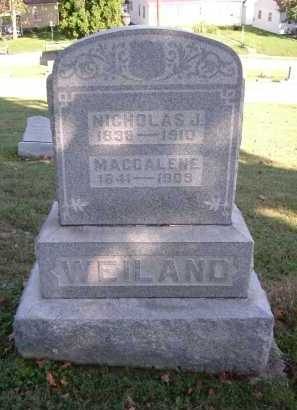 WEILAND, NICHOLAS - Hocking County, Ohio | NICHOLAS WEILAND - Ohio Gravestone Photos
