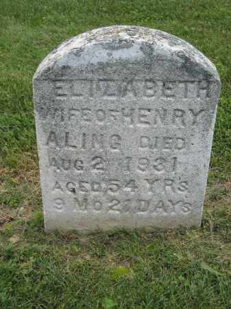 ALING, ELIZABETH - Holmes County, Ohio | ELIZABETH ALING - Ohio Gravestone Photos