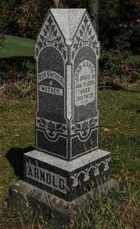 ARNOLD, JOHN - Holmes County, Ohio | JOHN ARNOLD - Ohio Gravestone Photos