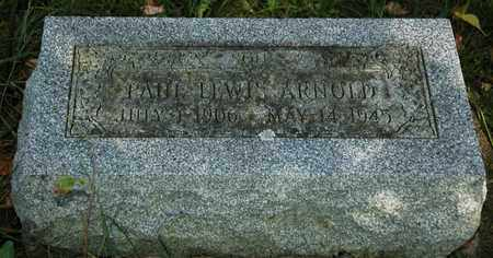 ARNOLD, PAUL LEWIS - Holmes County, Ohio | PAUL LEWIS ARNOLD - Ohio Gravestone Photos