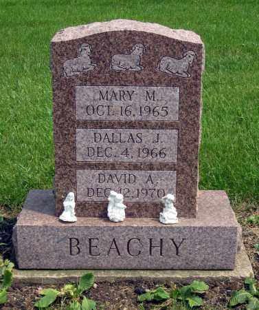 BEACHY, DALLAS J. - Holmes County, Ohio | DALLAS J. BEACHY - Ohio Gravestone Photos