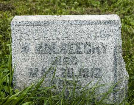 BEECHY, OSCAR ALEXANDER - Holmes County, Ohio | OSCAR ALEXANDER BEECHY - Ohio Gravestone Photos