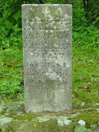 BEIDLER, REBECCA - Holmes County, Ohio | REBECCA BEIDLER - Ohio Gravestone Photos