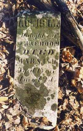 BOON, AGNIS M. - Holmes County, Ohio | AGNIS M. BOON - Ohio Gravestone Photos