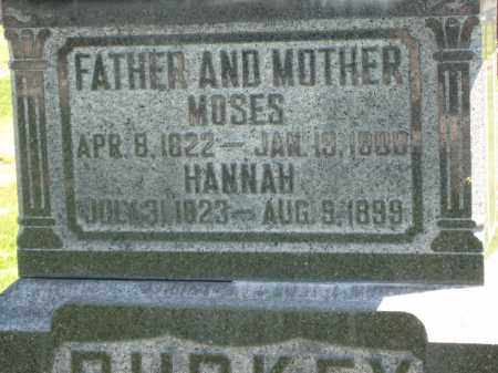 BURKEY, HANNAH - Holmes County, Ohio | HANNAH BURKEY - Ohio Gravestone Photos