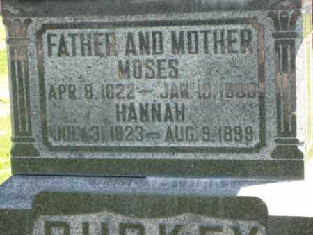 BURKEY, MOSES - Holmes County, Ohio | MOSES BURKEY - Ohio Gravestone Photos