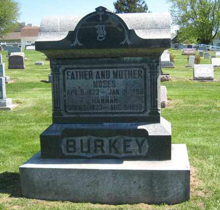 BURKEY MONUMENT, MOSES - Holmes County, Ohio | MOSES BURKEY MONUMENT - Ohio Gravestone Photos