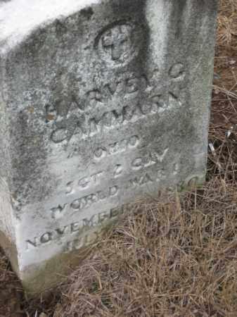 CAMMARN, HARVEY G. - Holmes County, Ohio   HARVEY G. CAMMARN - Ohio Gravestone Photos