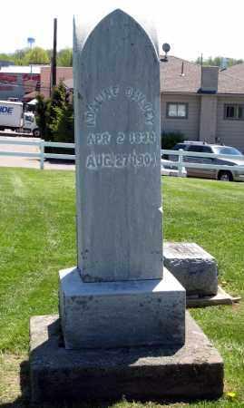 DALBY, ADALINE - Holmes County, Ohio | ADALINE DALBY - Ohio Gravestone Photos