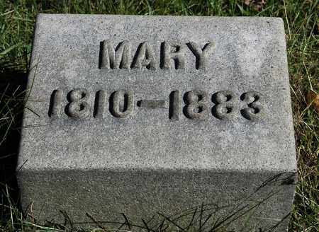 DRUSHEL, MARY - Holmes County, Ohio | MARY DRUSHEL - Ohio Gravestone Photos