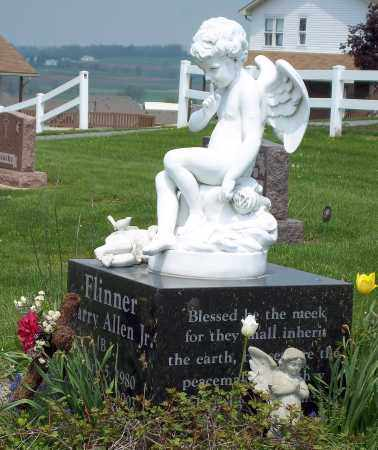 FLINNER ANGEL, BARRY ALLEN JR - Holmes County, Ohio | BARRY ALLEN JR FLINNER ANGEL - Ohio Gravestone Photos