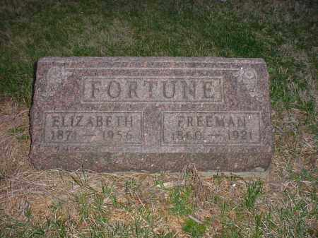 FORTUNE, FREEMAN - Holmes County, Ohio | FREEMAN FORTUNE - Ohio Gravestone Photos