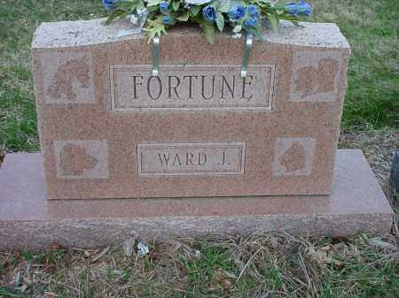 FORTUNE, WARD JESSE - Holmes County, Ohio | WARD JESSE FORTUNE - Ohio Gravestone Photos