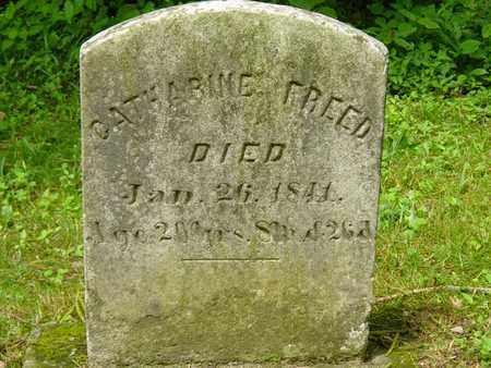 FREED, CATHARINE - Holmes County, Ohio | CATHARINE FREED - Ohio Gravestone Photos
