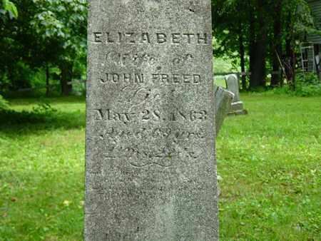 NEWCOMER FREED, ELIZABETH - Holmes County, Ohio | ELIZABETH NEWCOMER FREED - Ohio Gravestone Photos