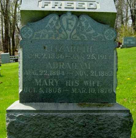 FREED, ELIZABETH - Holmes County, Ohio | ELIZABETH FREED - Ohio Gravestone Photos