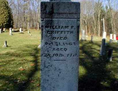 GRIFFITH, WILLIAM FINLEY - Holmes County, Ohio | WILLIAM FINLEY GRIFFITH - Ohio Gravestone Photos