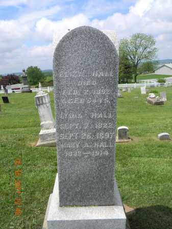 HALL, LYDIA - Holmes County, Ohio | LYDIA HALL - Ohio Gravestone Photos