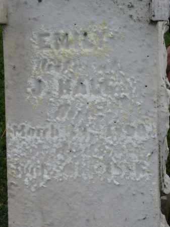 HALL, EMILY - Holmes County, Ohio | EMILY HALL - Ohio Gravestone Photos