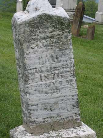HALL, SAMUEL - Holmes County, Ohio | SAMUEL HALL - Ohio Gravestone Photos
