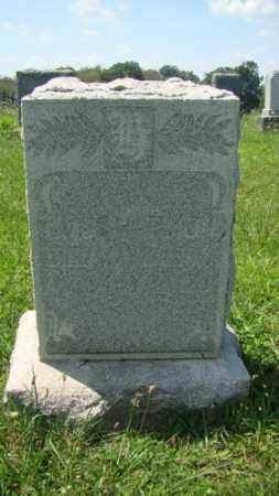 HARMON, AMOS - Holmes County, Ohio | AMOS HARMON - Ohio Gravestone Photos