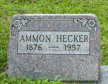 HECKER, AMMON - Holmes County, Ohio | AMMON HECKER - Ohio Gravestone Photos