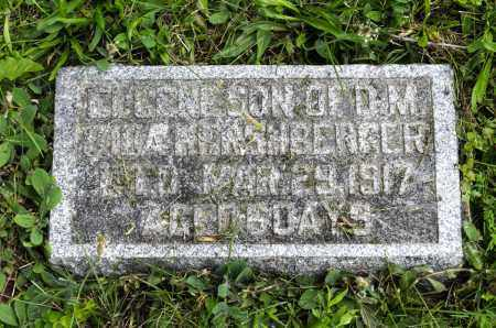 HERSHBERGER, EUGENE - Holmes County, Ohio | EUGENE HERSHBERGER - Ohio Gravestone Photos
