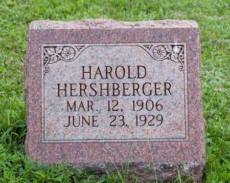 HERSHBERGER, HAROLD - Holmes County, Ohio | HAROLD HERSHBERGER - Ohio Gravestone Photos