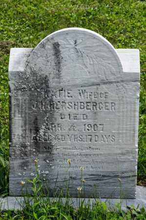TROYER HERSHBERGER, KATIE - Holmes County, Ohio | KATIE TROYER HERSHBERGER - Ohio Gravestone Photos