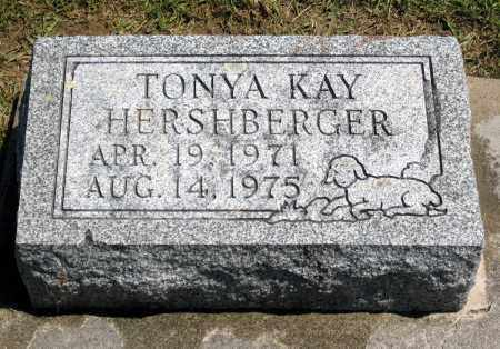 KAY HERSHBERGER, TONYA - Holmes County, Ohio | TONYA KAY HERSHBERGER - Ohio Gravestone Photos