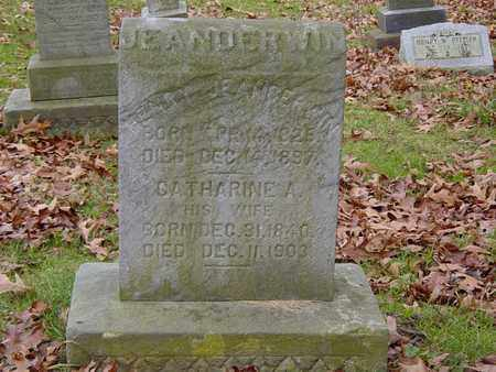 JEANDERWIN, CATHARINE A. - Holmes County, Ohio | CATHARINE A. JEANDERWIN - Ohio Gravestone Photos