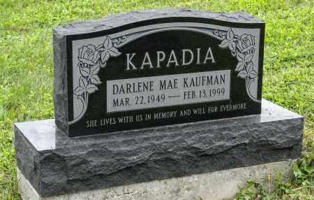 KAUFMAN KAPADIA, DARLENE MAE - Holmes County, Ohio | DARLENE MAE KAUFMAN KAPADIA - Ohio Gravestone Photos