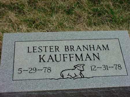 KAUFFMAN, LESTER BRANHAM - Holmes County, Ohio | LESTER BRANHAM KAUFFMAN - Ohio Gravestone Photos