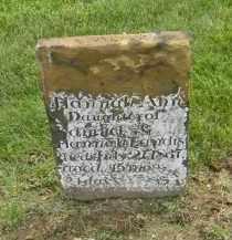 LANDIS, HANNAH ANN - Holmes County, Ohio | HANNAH ANN LANDIS - Ohio Gravestone Photos