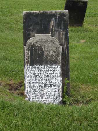 LANDIS MONUMENT, CATHARINE - Holmes County, Ohio | CATHARINE LANDIS MONUMENT - Ohio Gravestone Photos