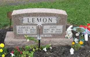 LEMON, JANE - Holmes County, Ohio | JANE LEMON - Ohio Gravestone Photos