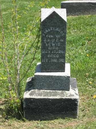 LEWIS, FINLEY ROSS - Holmes County, Ohio | FINLEY ROSS LEWIS - Ohio Gravestone Photos