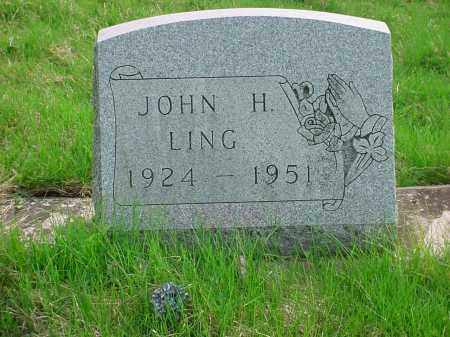 LING, JOHN HOYT - Holmes County, Ohio | JOHN HOYT LING - Ohio Gravestone Photos