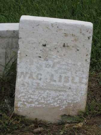 LISLE, UNKNOWN - Holmes County, Ohio | UNKNOWN LISLE - Ohio Gravestone Photos