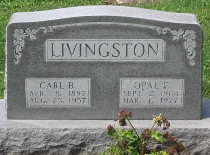 LIVINGSTON, OPAL F. - Holmes County, Ohio | OPAL F. LIVINGSTON - Ohio Gravestone Photos